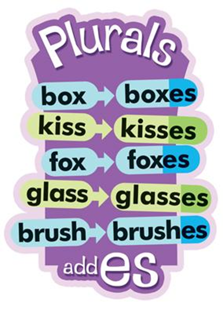 Learning Plurals With Examples Eage Tutor