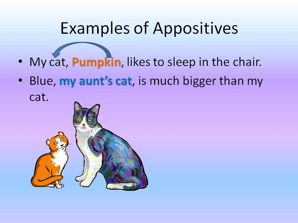 examples appositives