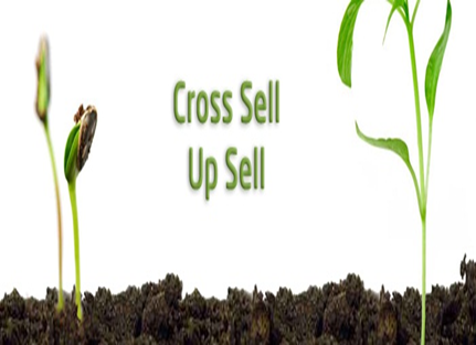 Cross_selling_and_Up_selling_are_important