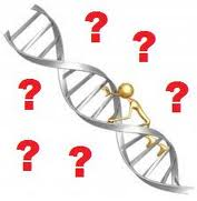 dna_research-1