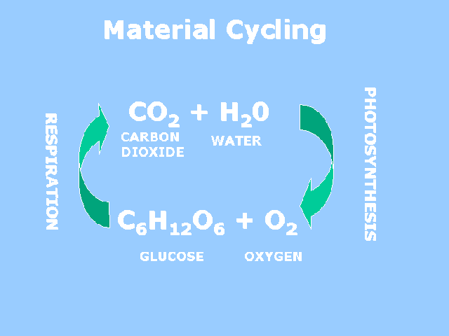 energy_material-6