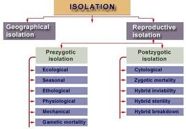 evolutionreproduction2