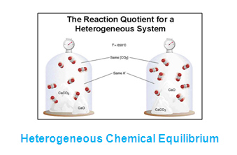 homo_heterogenous_equilibria_06